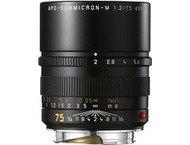 Leica M Apo-Summicron 75mm f/2.0