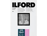 ILFORD MGD.1M 17.8 x 24.0 cm - 100 vel