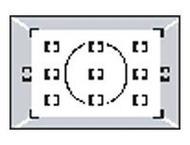 Nikon W / D2X matglas V voor D2H, D2Hs, D2X, D2Xs