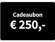 Cadeaubon Art  Craft - Waarde 250 Euro